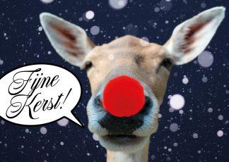 postkaart kerstkaart rudolf red nosed rendier